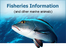 Fisheries Information