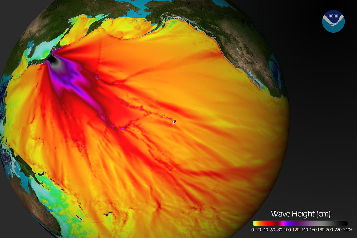 March 11, 2011 Japan tsunami event maximum wave amplitude map.  Filled colors show maximum computed tsunami amplitude in cm during 24 hours of wave propagation.