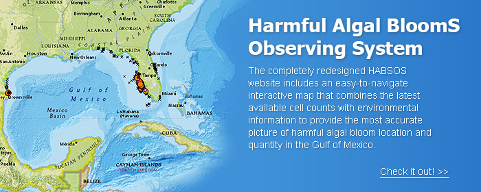 Harmful Algal BloomS Observing System